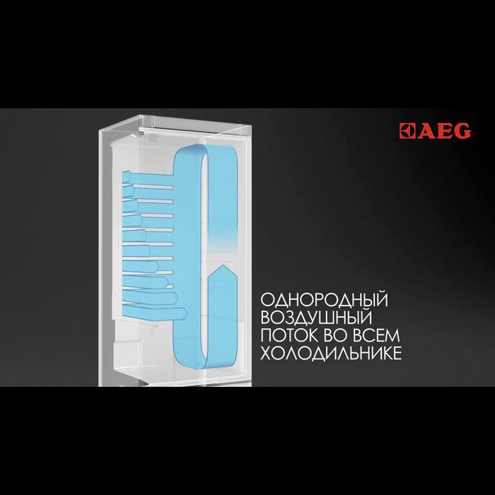 AEG - Отдельностоящий холодильник - S83520CMXF