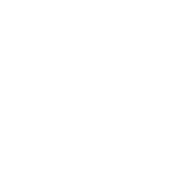 Steamify®